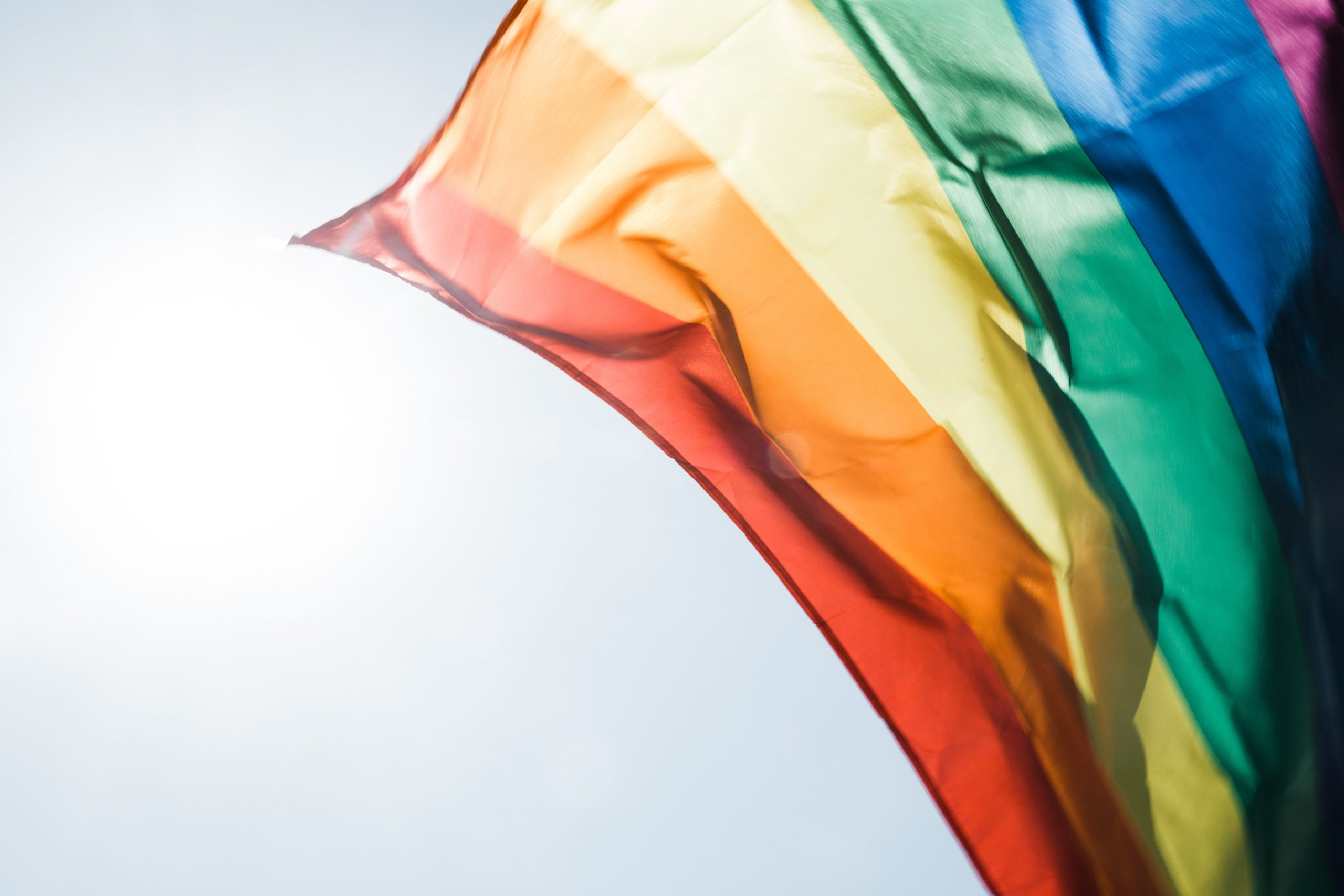Homosexualitatea – Concluzii